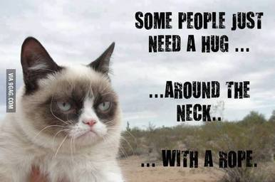Some People Sarcastic Cat Funny